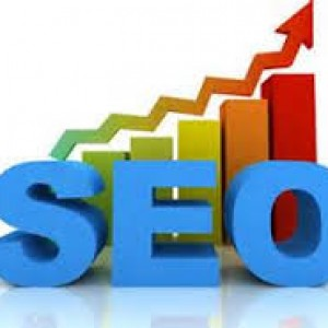 Success of SEO Professionals